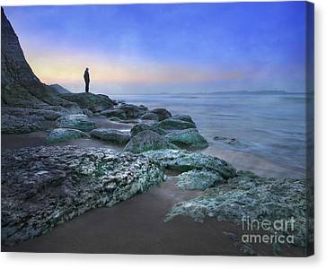Evening View Canvas Print by Roy  McPeak