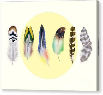 Feathers 2 Canvas Print by Mark Ashkenazi