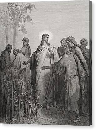 Jesus And His Disciples In The Corn Field Canvas Print by Gustave Dore