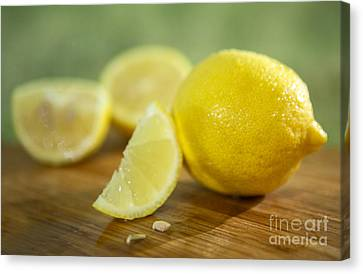 Lemon Citrus Limon Zitronen Canvas Print by Iris Richardson