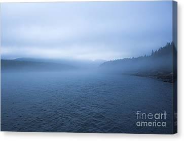 Mist In Otter Cove Canvas Print by Diane Diederich