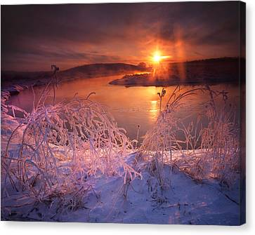 Morning Hors Frost Canvas Print by Ray Mathis
