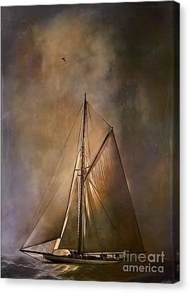 Shamrock II -1901  Canvas Print by Andrzej Szczerski