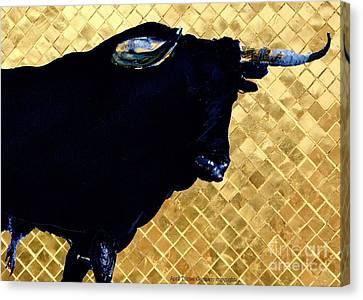 Toro Gold  Canvas Print by April Turner