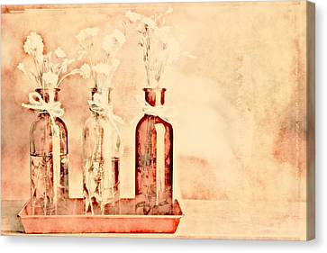 1-2-3 Bottles - R9t2b Canvas Print by Variance Collections