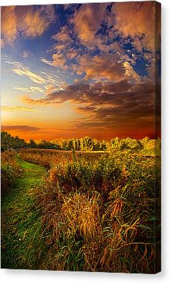 Along The Way Canvas Print by Phil Koch