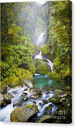 Amazing Waterfall Canvas Print by Tim Hester