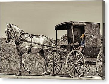 Amish Boy Tips Hat Canvas Print by Robert Frederick