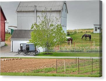 An Amish Farm Canvas Print by Dyle   Warren
