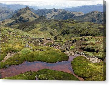 Andes Mountains Canvas Print by Dr Morley Read