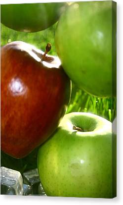 Apples Canvas Print by Paula Brown