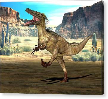 Austroraptor Dinosaur Canvas Print by Friedrich Saurer