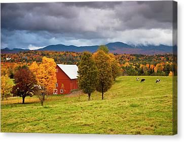 Autumn Barn Near Stowe, Vermont, Usa Canvas Print by Brian Jannsen
