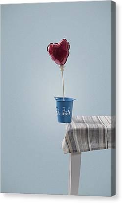 Balanced Canvas Print by Joana Kruse