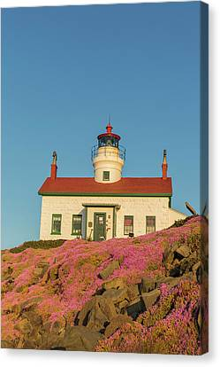 Battery Point Lighthouse In Crescent Canvas Print by Chuck Haney