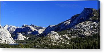 Beautiful Sierras Canvas Print by Lynn Bawden