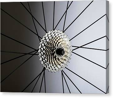 Bicycle Cassette Canvas Print by Science Photo Library