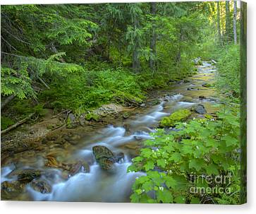 Big Creek Canvas Print by Idaho Scenic Images Linda Lantzy