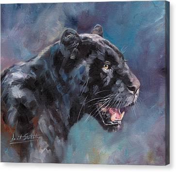 Black Panther Canvas Print by David Stribbling
