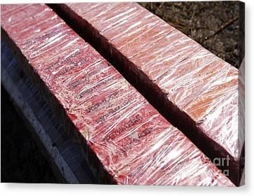 Blocks Of Tnt Explosive Canvas Print by RIA Novosti