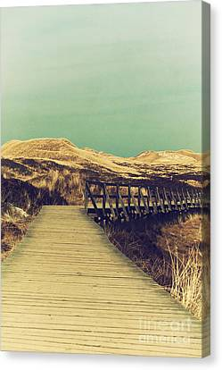 Boarded Walkway Canvas Print by Angela Doelling AD DESIGN Photo and PhotoArt