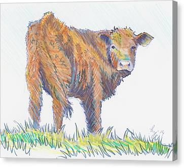 Calf Canvas Print by Mike Jory