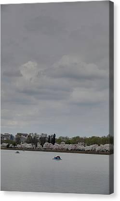 Cherry Blossoms - Washington Dc - 01134 Canvas Print by DC Photographer