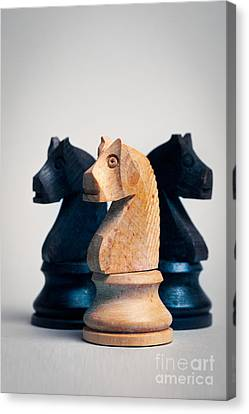 Chess Knights Canvas Print by Mark Fearon