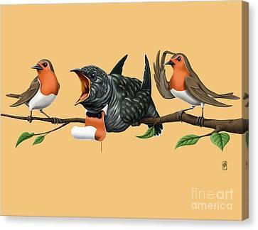 Cock Robin Colour Canvas Print by Rob Snow