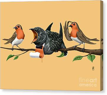 Cock Robin Colour Canvas Print by Rob Snow