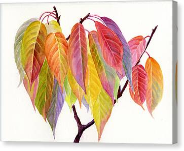 Colorful Fall Leaves Canvas Print by Sharon Freeman