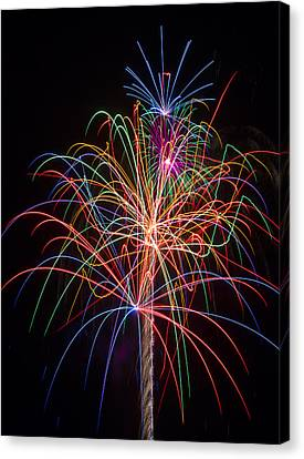 Colorful Fireworks Canvas Print by Garry Gay