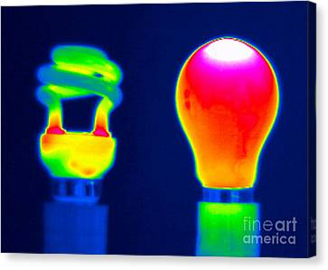 Comparing Light Bulbs, Thermogram Canvas Print by Tony McConnell
