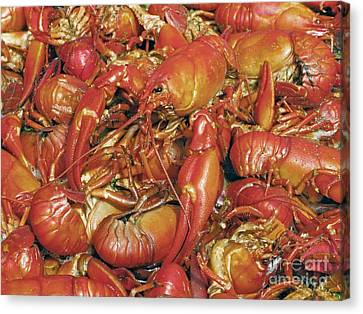 Cooked Crayfish Canvas Print by Bjorn Svensson