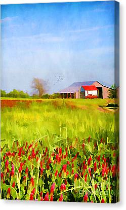Country Kind Of Spring Canvas Print by Darren Fisher