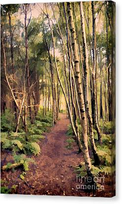 Country Lane Canvas Print by Amanda And Christopher Elwell