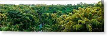 Countryside, Mauritius Island, Mauritius Canvas Print by Panoramic Images