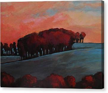 Countryside Canvas Print by Suzanne Tynes