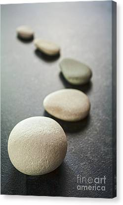 Curving Line Of Grey Pebbles On Dark Background Canvas Print by Colin and Linda McKie