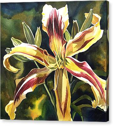 Day Lily Canvas Print by Alfred Ng
