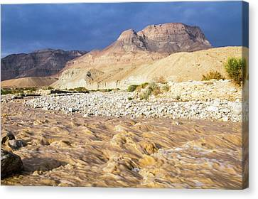 Desert Flash Flood Canvas Print by Photostock-israel