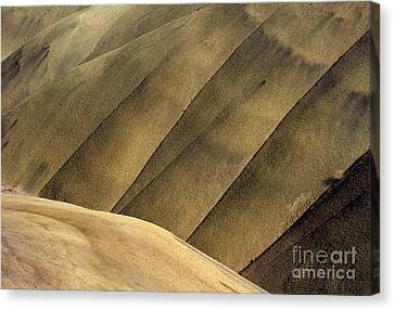 Desert Lines Canvas Print by Mike  Dawson