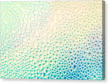 Dew Background Canvas Print by Mythja  Photography
