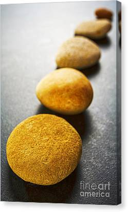 Diagonal Line Of Brown Pebbles On Dark Background Canvas Print by Colin and Linda McKie