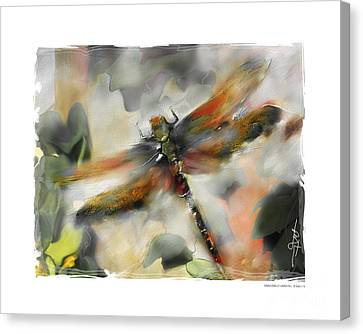 Dragonfly Garden Canvas Print by Bob Salo