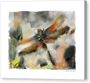 Dragonfly Garden Canvas Print by Bob Salo