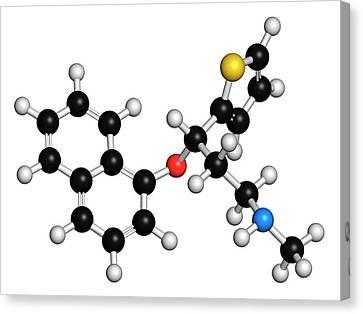 Duloxetine Antidepressant Drug Molecule Canvas Print by Molekuul