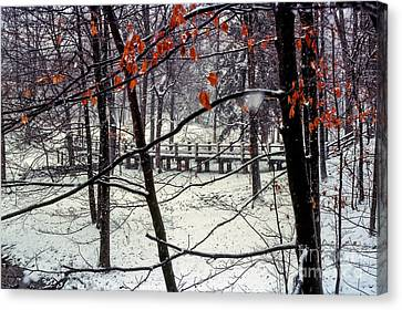 Early Snow Canvas Print by Bob Phillips