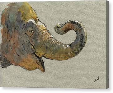 Elephant Head Canvas Print by Juan  Bosco