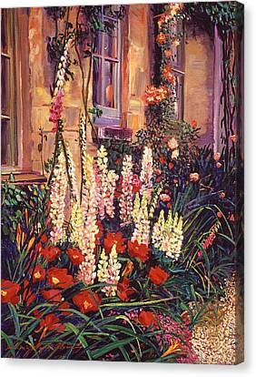 English Cottage Garden Canvas Print by David Lloyd Glover